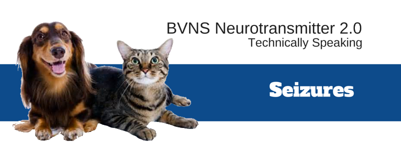 Neurotransmitter 2 0 Technically Speaking May 2014 Bvns