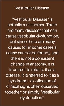 vestibular-disease