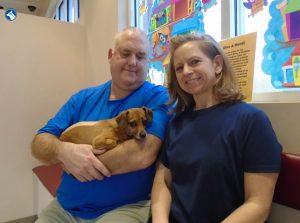 Phineas | Bush Veterinary Neurology Service